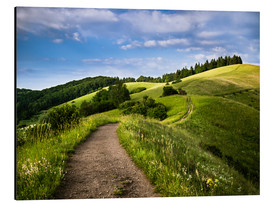 Alu-Dibond  Path over Rolling Hills in Summer - Andreas Wonisch