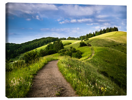 Canvas print  Path over Rolling Hills in Summer - Andreas Wonisch