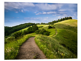 Foam board print  Path over Rolling Hills in Summer - Andreas Wonisch