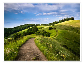 Premium poster  Path over Rolling Hills in Summer - Andreas Wonisch