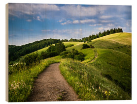 Wood print  Path over Rolling Hills in Summer - Andreas Wonisch