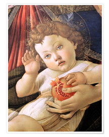 Premium poster  Christ Child from the Madonna of the Pomegranate - Sandro Botticelli
