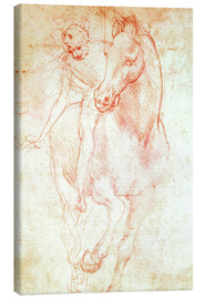 Canvas print  Study of a Horse and Rider - Leonardo da Vinci