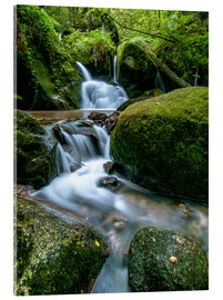 Acrylic print  Little Waterfall in Black Forest - Andreas Wonisch