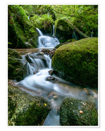 Premium poster Little Waterfall in Black Forest