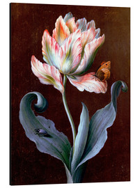 Aluminium print  Parrot tulip with butterfly and beetle - Barbara Regina Dietzsch