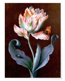 Poster  Parrot Tulip with Butterfly and Beetle - Barbara Regina Dietzsch