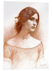 Acrylic print  Study for The Lady Clare - John William Waterhouse