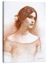 Canvas print  Study for The Lady Clare - John William Waterhouse