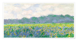 Premium poster  Field of Yellow Irises in Giverny - Claude Monet