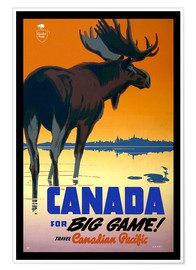 Premium poster  Canada - big game - Travel Collection