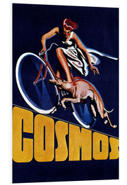 Foam board print  Cosmos bicycles - Advertising Collection