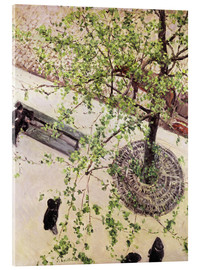 Acrylic glass  Boulevard from above - Gustave Caillebotte