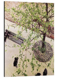 Aluminium print  Boulevard from above - Gustave Caillebotte