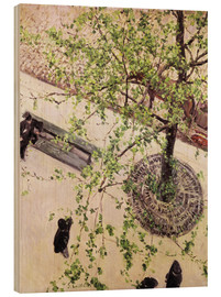 Wood print  Boulevard from above - Gustave Caillebotte