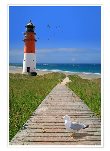Premium poster The road to the lighthouse by the sea