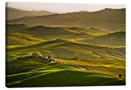 Canvas print  Evening light in Tuscany - Andreas Wonisch