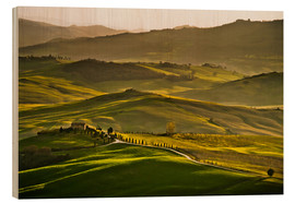 Wood print  Evening light in Tuscany - Andreas Wonisch