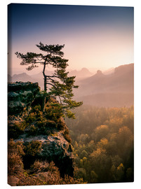 Canvas print  Lonely Tree at Sunrise - Andreas Wonisch