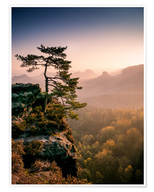 Premium poster Lonely Tree at Sunrise