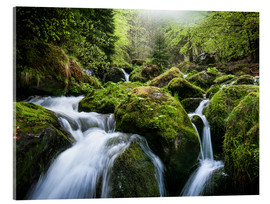 Acrylic print  Wild Creek in German Black Forest - Andreas Wonisch
