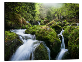 Aluminium print  Wild Creek in German Black Forest - Andreas Wonisch