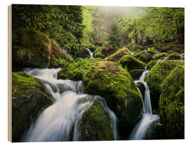 Wood print  Wild Creek in German Black Forest - Andreas Wonisch