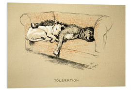 Foam board print  Toleration - Cecil Charles Windsor Aldin