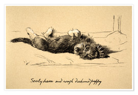 Poster  Rough Dachshund Puppy - Cecil Charles Windsor Aldin