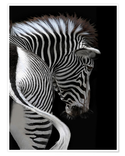 Premium poster african stripes II
