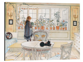 Alu-Dibond  Flowers on the windowsill - Carl Larsson
