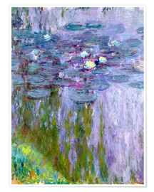 Premium poster  Waterlilies - Claude Monet