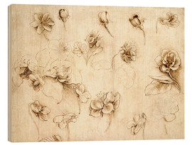 Wood print  Study of Flowers of Grass-like plants - Leonardo da Vinci