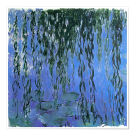 Premium poster Water Lilies and Weeping Willow Branches