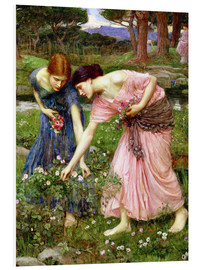 Foam board print  Rose picking in May - John William Waterhouse