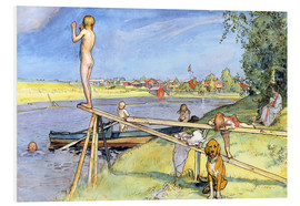Forex  A Pleasant Bathing Place - Carl Larsson