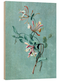 Wood print  Honeysuckle - Pierre Joseph Redouté