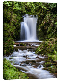 Canvas print  Waterfall of Geroldsau, Black Forest - Andreas Wonisch