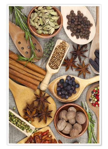 Premium poster Spices and Herbs II