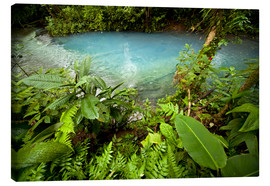 Canvas print  Rio Celeste Costa Rica - Peter Schickert