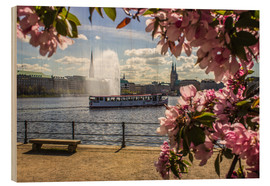 Wood print  Cherry on the Alster in Hamburg for Spring - Dennis Stracke