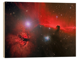 Reinhold Wittich - Horsehead Nebula, constellation Orion