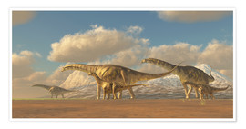 Premium poster  A herd of Argentinosaurus dinosaurs - Corey Ford