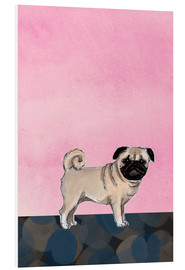 Foam board print  Pug dog - Martine Vuitton-Serape