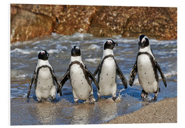Forex  four cool waddling penguins - Jürgen Ritterbach
