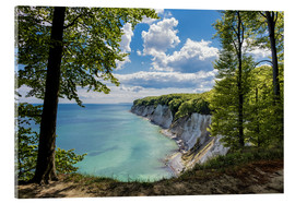 Acrylic print  Chalk cliff on the island Ruegen, Germany - Rico Ködder