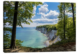 Canvas print  Chalk cliff on the island Ruegen, Germany - Rico Ködder