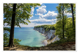 Premium poster  Chalk cliff on the island Ruegen, Germany - Rico Ködder