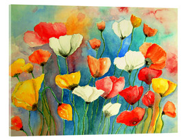Acrylic print  Colorful poppies - siegfried2838