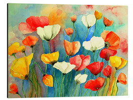 Alu-Dibond  Colorful poppies - siegfried2838
